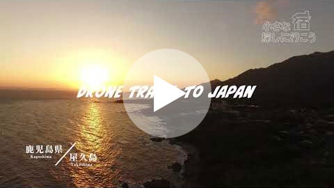 鹿児島県 - 屋久島 | KagoshimaKen - Yakushima